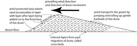 sand dune cross section physical geology lecture deserts