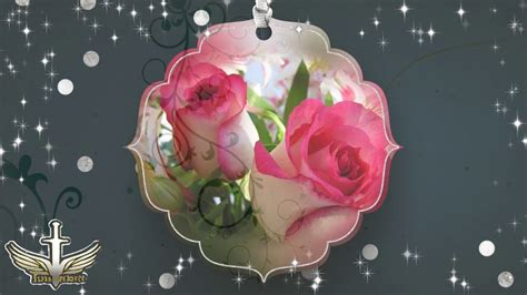 imagenes flores bellas gratis imagenes de bellas flores hd 13 11 2016 youtube