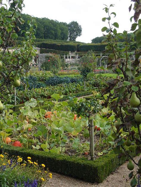 edible backyard plants 143 best images about au potager cuisine on pinterest