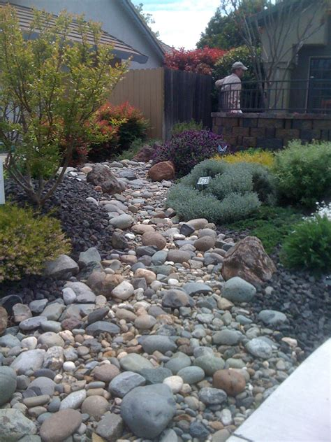 dry stream bed geno s garden design coaching lawn free garden tour