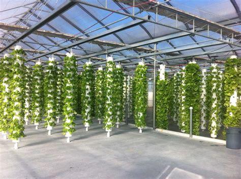 hydroponics aeroponics  aquaponics images