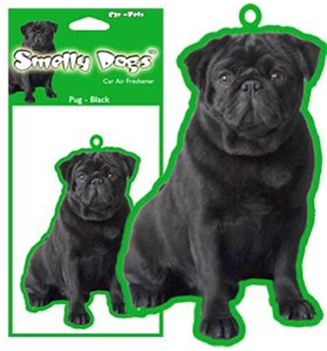 pug air freshener 26 best images about air freshener on forever21 cat and cherry pies