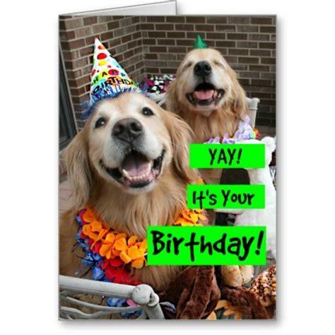 golden retriever birthday ecard the 25 best happy birthday golden retriever ideas on happy birthday