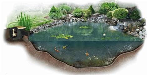 How to Build a Koi Pond   Ultimate Step by Step Guide