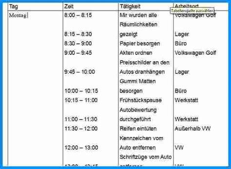 Wochenbericht Praktikum Vorlage Altenpflege 8 wochenbericht praktikum vorlage business template