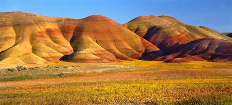 john day fossil beds 30 most impressive fossil sites in north america top value reviews