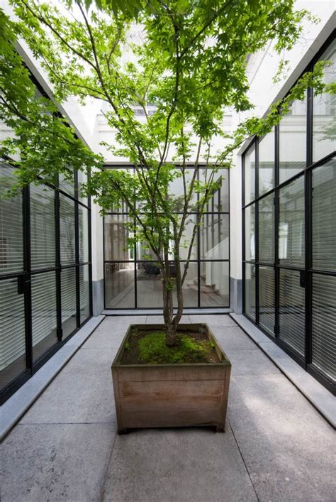 best 25 atrium garden ideas on pinterest atrium house atrium and indoor courtyard 25 best ideas about internal courtyard on pinterest