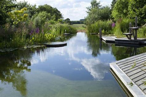 natural pool natural swimming pool water gardens ponds pools pinterest