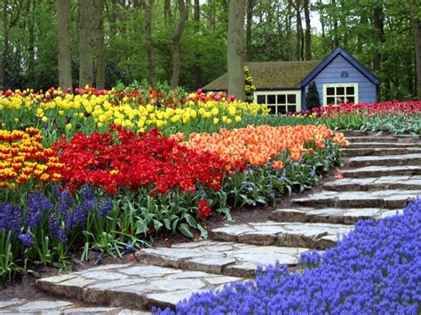 Photos The World S Largest Flower Garden Garden Variety Flower Garden In The World