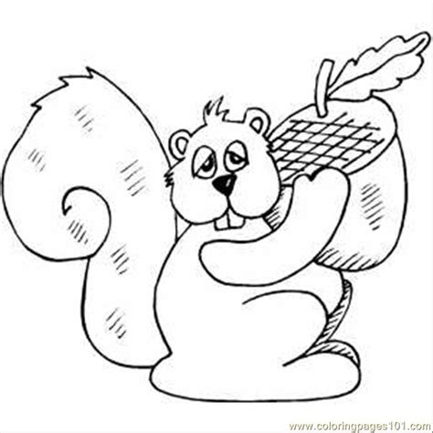 free coloring pages acorn squirrel with acorn coloring pages