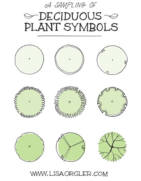 Draw Your Own Floor Plan drawing plant symbols practice sheet