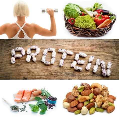 protein vegetables vegetable protein what foods are sources of protein