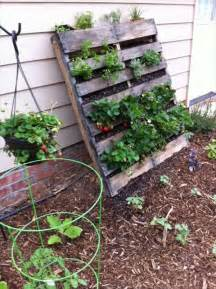 Vertical Pallet Gardens Diy Vertical Pallet Vegetable Garden 99 Pallets
