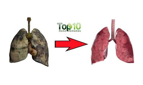 How To Detox Your Lungs At Home by How To Cleanse And Detox Your Lungs Top 10 Home Remedies