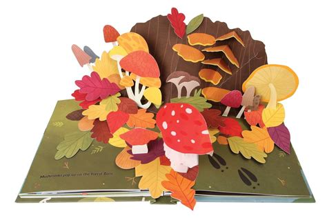how to make a pop up picture book best pop up books for popsugar