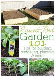Raised Bed Gardening Tips by Raised Bed Garden 101 Tips For Building Budgeting