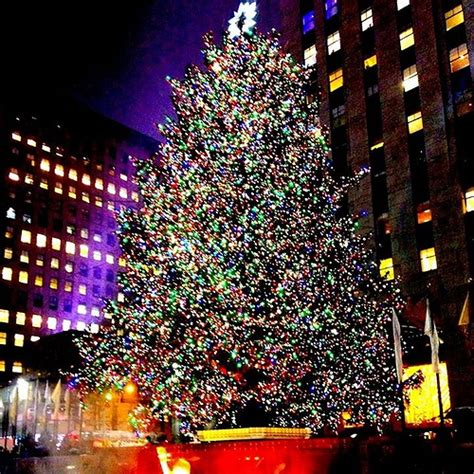 the 2015 rockefeller tree lighting 2015 kicking