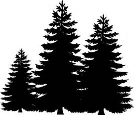 Pine Tree Outline by Silhouette Of Pine Trees Clipart Best
