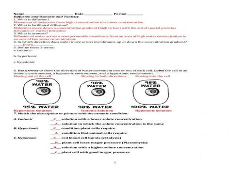 cell membrane coloring worksheet answers coloring pages