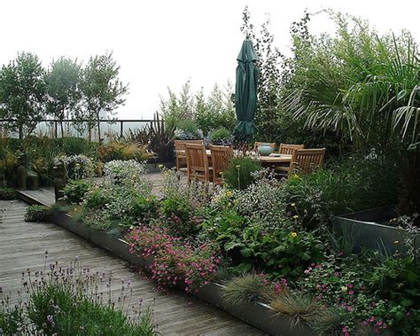 rooftop plants roof garden plants home decor report