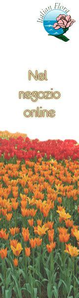 spedire fiori nel mondo invio fiori nel mondo su italian flora consegna fiori da