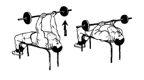 tricep close grip bench press exercises