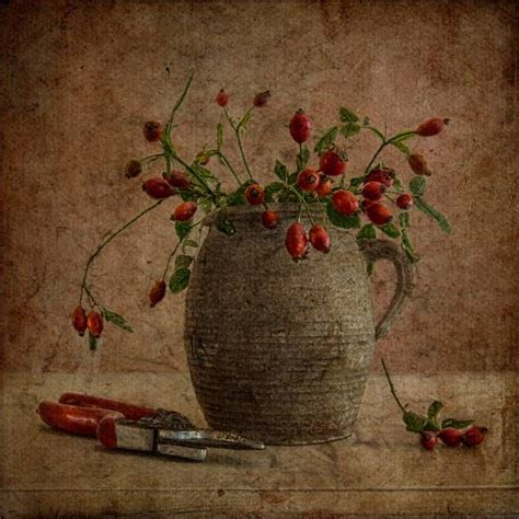 Tineke Stoffels Dutch Photographer With Images Texture Photography Fine Art Photo