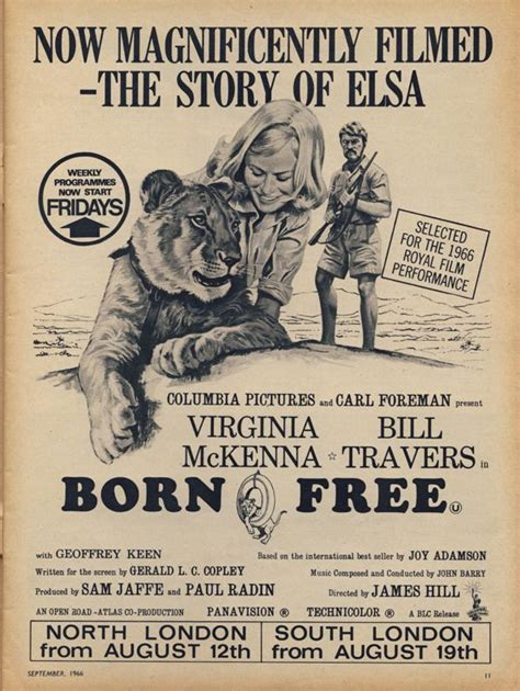 born free documentary trailer celebrating 50 years of lion conservation born free