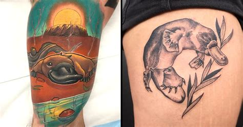 platypus tattoo 11 playful platypus tattoos tattoodo