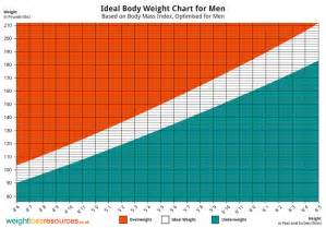 Exercise Charts For Men » Home Design 2017