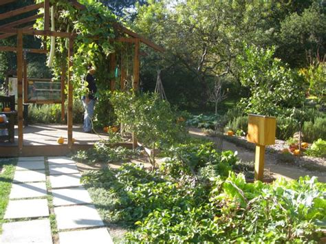 edible front yard design eat whole food front yard edible landscapes