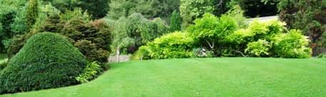 mon beau jardin j ach 232 te 224 bailleul