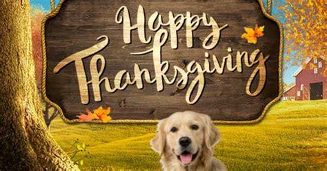 thanksgiving surprise interactive thanksgiving ecard