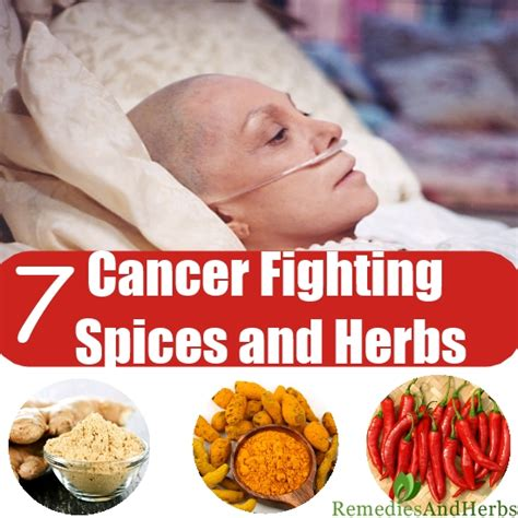 7 cancer fighting culinary spices and herbs diy home
