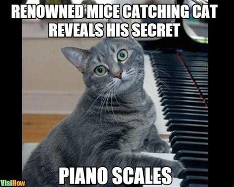 Piano Memes - make your piano playing fingers stronger and faster visihow