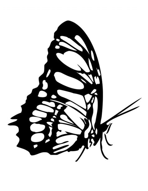 butterfly coloring pages pinterest butterfly coloring page tattoo pictures pin pinterest id