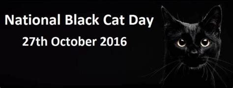 when is national short girl day 2016 happy national black cat day 2016the chronicles of