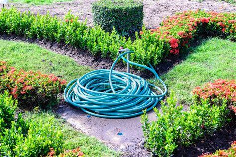 acqua giardino tubo flessibile arrotolato dell acqua in giardino immagine