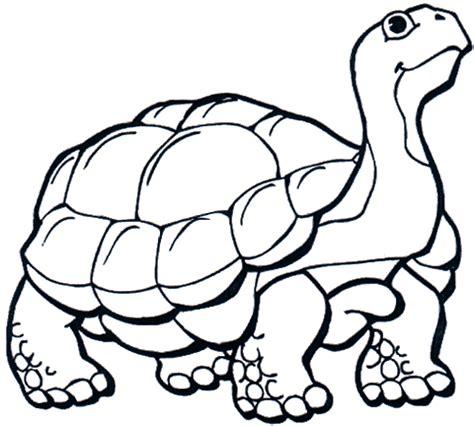 imagenes navideñas para pintar a color divirtamonos pintando tortugas colorear im 225 genes