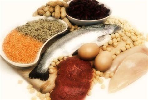 ricerca sull alimentazione umana the china study un dossier scottante sull alimentazione