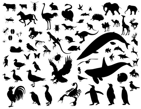 animal silhouette vector pack eps file ağa 231 kakan