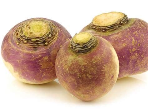 images of rutabaga 10 interesting benefits of rutabagas organic facts