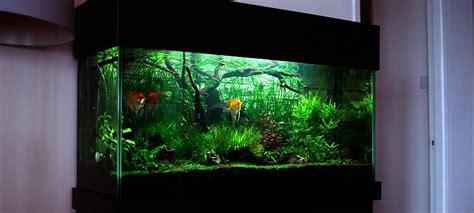 aquascape design software aquascape design software 28 images aquascape design