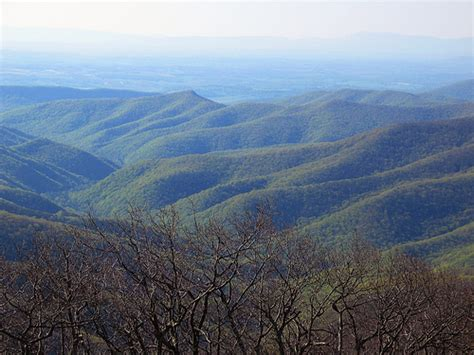 Reddish Knob reddish knob flickr photo