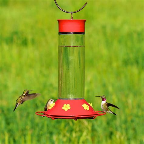 amazon com perky pet 209b our best glass hummingbird
