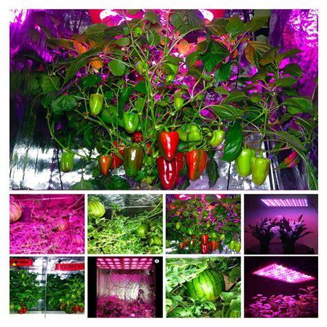 led plant grow light full spectrum lamp indoor