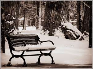 bench in snow liberty park salt lake city utah scott s place images