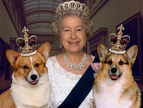 Queen Elizabeth Ii Corgis | 10 celebrities with corgis
