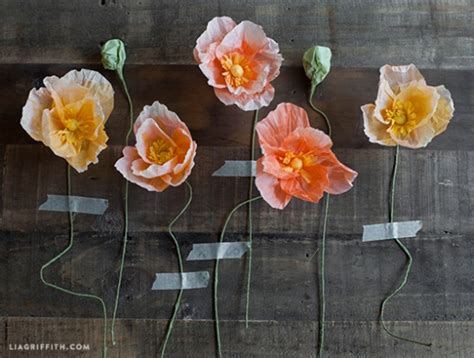 How To Make Poppies Out Of Tissue Paper - tissue paper poppies by lia griffith project