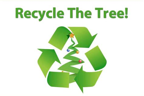 christmas tree recycling torquay christmas tree recycling